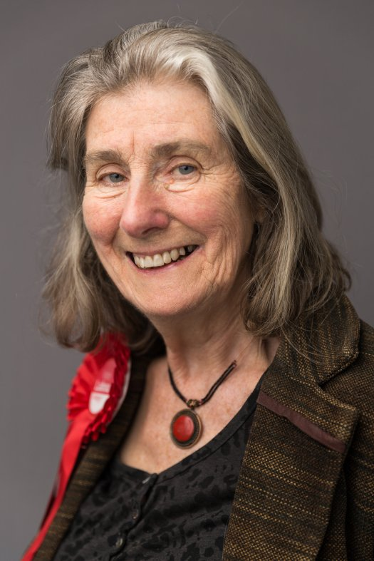 Melanie Moulding Coleford and Holcombe Ward Labour